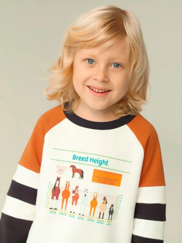 Яркий детский свитшот с цветными вставками с принтом Horse Breed